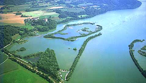 Drau Revier Stürzenbecher Völkermarkter Stausee Biotop und Hafen